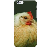 Poulie and Chicklette - Beautiful Belgians iPhone Case/Skin