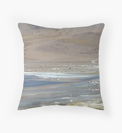 Pink Flamingos in South West Bolivia Throw Pillow
