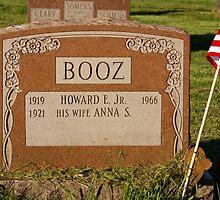 Booz by skycat