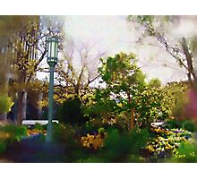 Spring on the Plaza Photographic Print