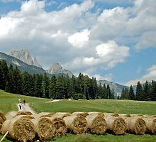 Countrylife in the Dolomites by Arie Koene