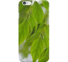 Photography: Leaves iPhone Case/Skin
