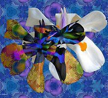 Getting Closer in Elegant Forms by Nira Dabush