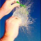 Go on Burst my Bubble by Kym Howard