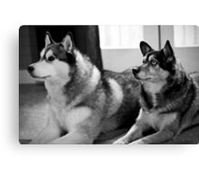 B1 and B2...sort of? Canvas Print