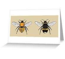 Bumblebee Illustrations Greeting Card