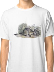 Western Brush wallaby Classic T-Shirt