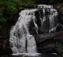 Bald River Falls by Michelle  Edwards Insights Photography
