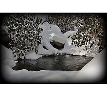 Oasis In Mountain Snow Photographic Print