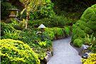 Mystery - Butchart Garden - BC by Yannik Hay