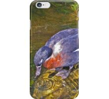 Australian Shelduck iPhone Case/Skin