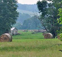 Rural Farm Scene- Rockbridge, Ohio by mltrue