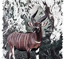 Painting of The Bongo by marmur