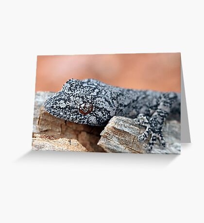Southern Spiny-tailed Gecko Greeting Card