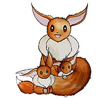Eevee Family Photographic Print