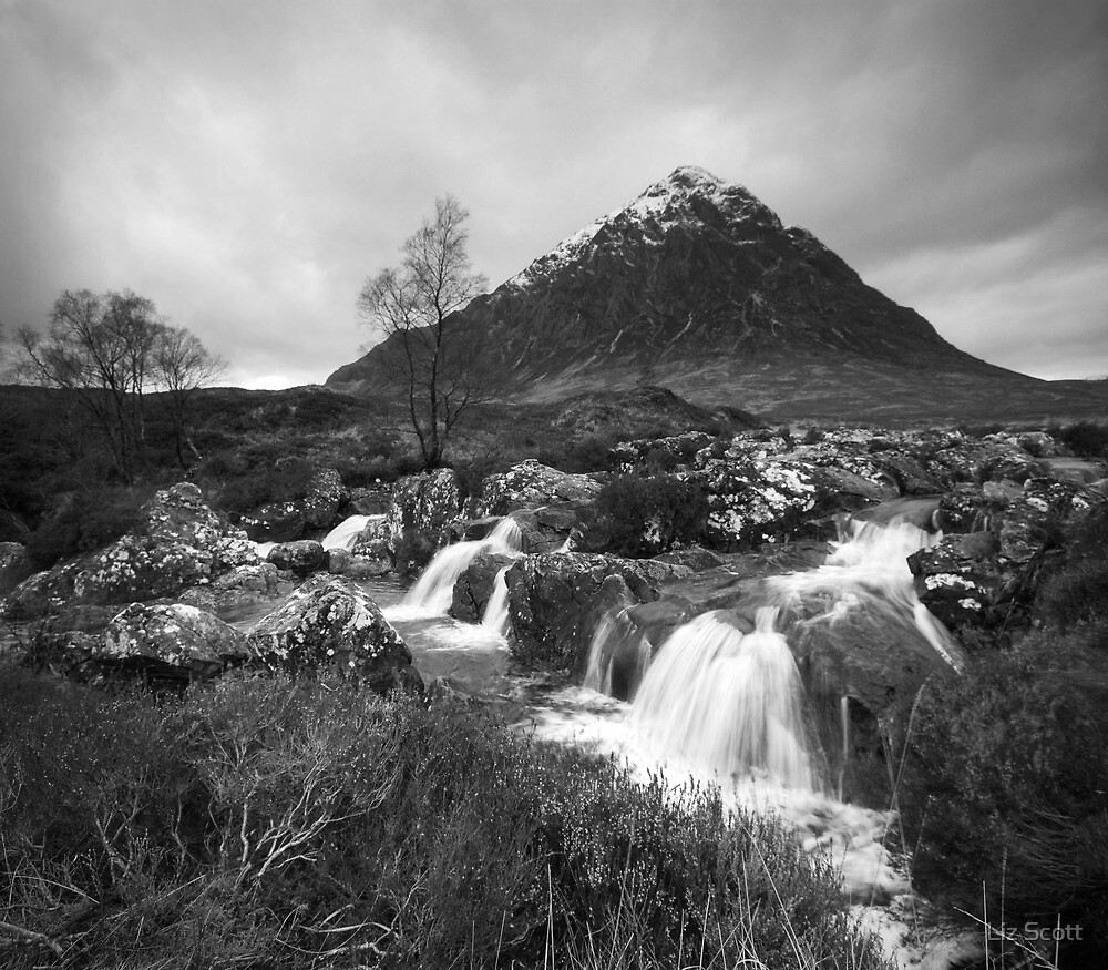 Beautiful Buachaille, Etive Mor  by Liz Scott