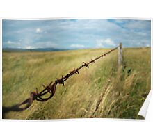 Barbed and rusting Poster