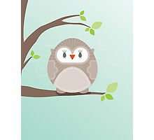 Sweet owl in a tree Photographic Print