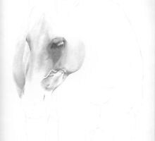 White Horse WIP by Karen Townsend