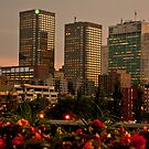 Montreal at Sunset by Wanda Dumas