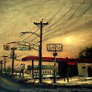 """Setting Sun in Edgewater Park - """"Wired"""" Series by Monica Vanzant"""