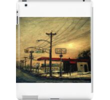 "Setting Sun in Edgewater Park - ""Wired"" Series iPad Case/Skin"