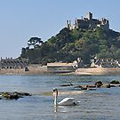 St. Michaels Mount View by Michael Tapping