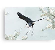 Great Blue Heron in Spring Canvas Print