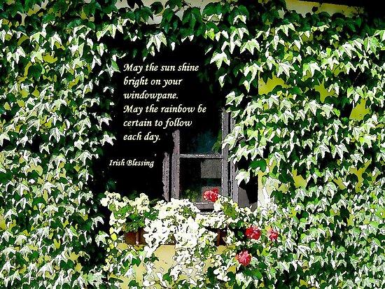 Sunshine on Windowpane by Caroline  Lembke