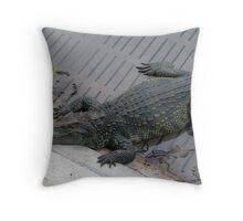 Crocodile farm in Thailand 3 Throw Pillow