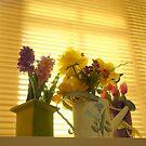 Memorial Flowers (1) by goddarb