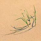 Grassy Shadows by Carrie Bonham