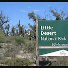 Little Desert  by Debbie  Jones