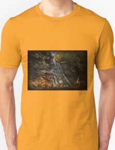 Chameleon Falls Autumn Foliage Unisex T-Shirt