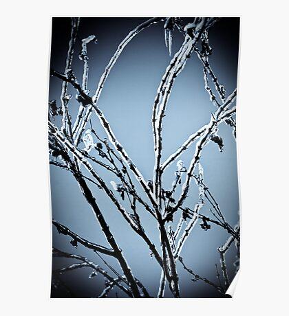 Frozen Limbs Poster
