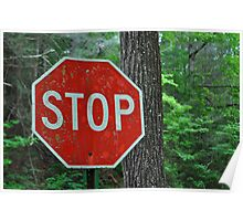 Stop for Nature Poster