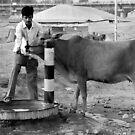 Man, Animal and Thirst by RajeevKashyap