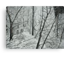 Frosty Perch (Full) Canvas Print