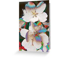 Up Down and All Around Greeting Card
