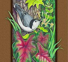 Summer Nuthatch by Kathleen Dupree