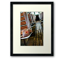 ...go round and round Framed Print