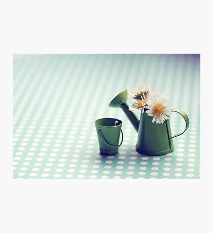 small world Photographic Print