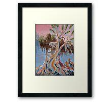 Eureka Cypress Framed Print