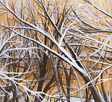 Winter morning view by Barbara Weir