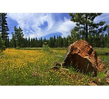 Springtime In Lassen County Photographic Print