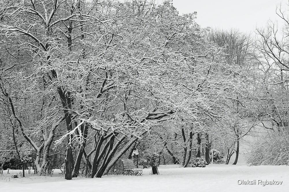 Park under snow by Oleksii Rybakov