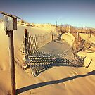 Cape Cod Dune Fence by capecodart