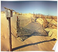 Cape Cod Dune Fence Poster