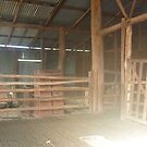 The Old Shearing Shed by Redviolin