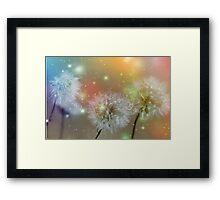 Dandelion filed Framed Print
